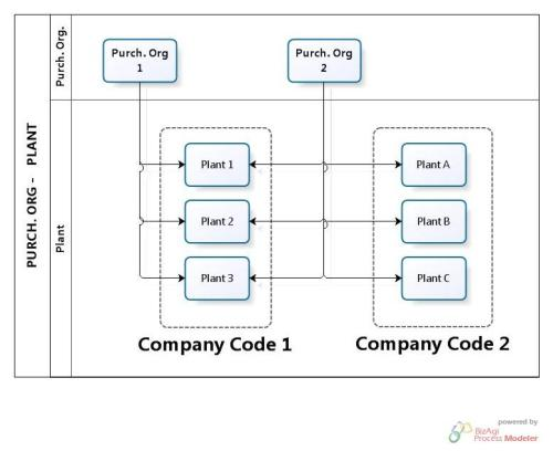 Purchasing Org - Company Code - Plant
